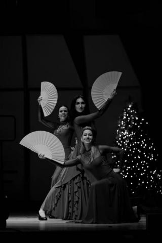 Dancing Teacher, Flamenco, Classical Ballet and Contemporary Dance